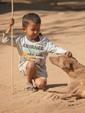 Burmese kid playing with a dog Royalty Free Stock Photo