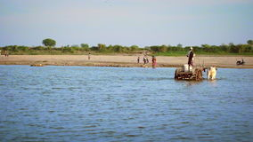 Burmese local people crossing the Irrawaddy river. Myanmar. Burmese local people crossing the Irrawaddy river shoal near village driving wooden cart drawn by two stock video