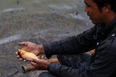 Burmese man holding freshwater fish Stock Image