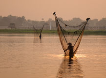 Burmese men catch fish by net in Myanmar Royalty Free Stock Images