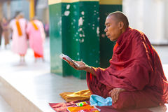Burmese monk reading and chanting Stock Photography