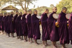 Burmese monks in dark purple robes with bowl standing in line waiting for food. Bagan, Myanmar, January 17, 2017 Royalty Free Stock Photo