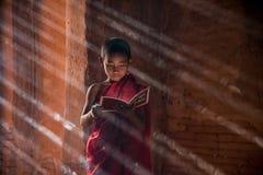 Burmese novice reading book inside stupa. With light ray background royalty free stock photos