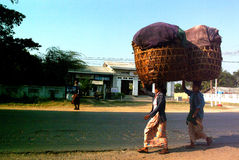 Burmese woman carrying on their heads. Royalty Free Stock Images