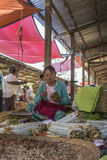 Burmese Woman - Inle Lake - Myanmar (Burma). A Burmese woman selling homemade cigars on a market stall in a village near Inle Lake in Shan State, Myanmar (Burma stock photos