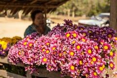 Burmese woman sellingflowers at asian market. Bagan, Myanmar Stock Image