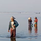 Burmese women over water Royalty Free Stock Images
