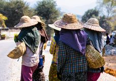 Burmese women are working to build a road, Myanmar. royalty free stock photo