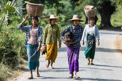 Burmesse farmers women Monywa Myanmar. CHAUNG-U, MYANMAR - DECEMBER 01, 2016 :  burmesse farmers women walking on the road near Monywa royalty free stock images