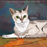 Burmilla Cat Illustration ilustración del vector