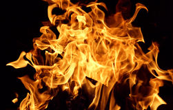 Burn. Dancing flames against a black background royalty free stock photos