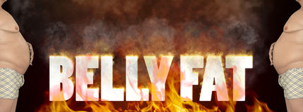Burn That Belly Fat Illustration Stock Images