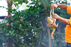 Burn chicken. A man burning a chicken for remove a feather before cooking,Local cleaning chicken in Thailand Stock Photos