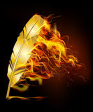 Burn feather Royalty Free Stock Image
