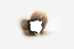 Burn hole in paper. Close up Stock Images