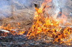 Burn off dry grass Royalty Free Stock Photo