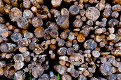 Burn pile Stock Photos
