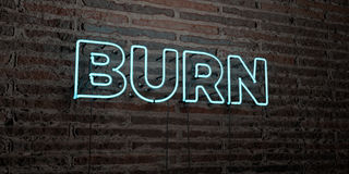 BURN -Realistic Neon Sign on Brick Wall background - 3D rendered royalty free stock image Royalty Free Stock Photography