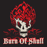 Burn of skull Royalty Free Stock Photography