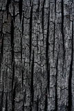 Burn Wood. Details patterned surface texture of burn wood Stock Photos
