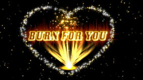BURN FOR YOU stock video