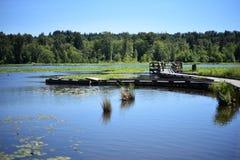 Burnaby湖地方公园的看法 库存照片