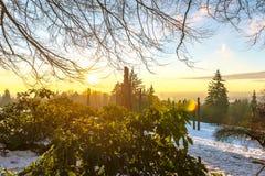 Burnaby-Gebirgstotempfahl Vancouver im Januar 2017 Stockbild