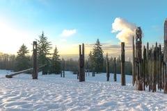 Burnaby-Gebirgstotempfahl Vancouver im Januar 2017 Stockbilder