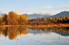 burnaby mgłowy jezioro Fotografia Royalty Free