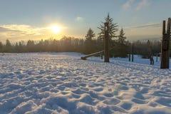 Burnaby montaña tótem Vancouver enero de 2017 Imagenes de archivo