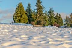 Burnaby montagna totem palo Vancouver gennaio 2017 Fotografie Stock