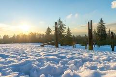 Burnaby montagna totem palo Vancouver gennaio 2017 Immagini Stock Libere da Diritti