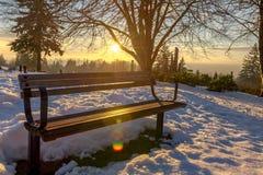 Burnaby montagna totem palo Vancouver gennaio 2017 Fotografie Stock Libere da Diritti