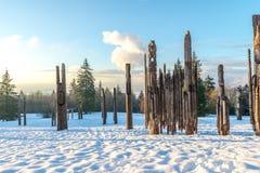Burnaby montagna totem palo Vancouver gennaio 2017 Immagine Stock Libera da Diritti