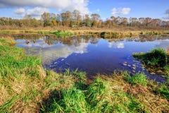 Burnaby sjö i höst Fotografering för Bildbyråer