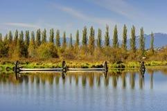Burnabymeer en oever van het meer Stock Afbeeldingen