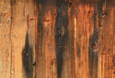 Burned barn wood. Royalty Free Stock Images
