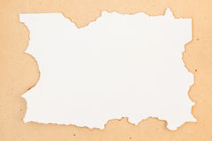 Burned border blank paper Royalty Free Stock Images
