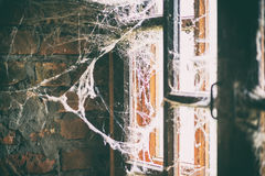 Burned brick wall with spider web, bright light from the window Stock Image