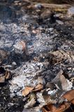 Burned charcoal and ash from fire Royalty Free Stock Photos