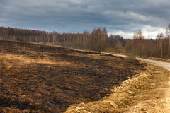 Burned earth after conflagration Stock Photo