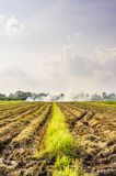 Burned fields in Thailand Stock Photography