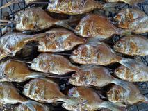 Burned fish with smoke Stock Images