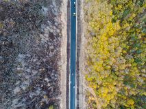 Burned forest from above Royalty Free Stock Images