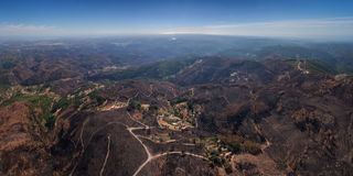 Burned forest Monchique. View from the sky. Stock Photo