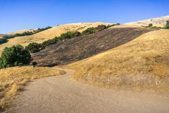 Burned grass area on the golden hills of Mission Peak preserve, south San Francisco bay, California stock image