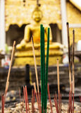 Burned incense sticks in the Incense holder in a buddhist templ Royalty Free Stock Images