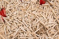 Burned joss stick Stock Image