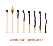 Burned Matches Set. Various stages of matches burning from new to completely burned set isolated on white background realistic vector illustration Royalty Free Stock Image