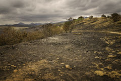 Burned Out Areas, San Diego County, California royalty free stock image